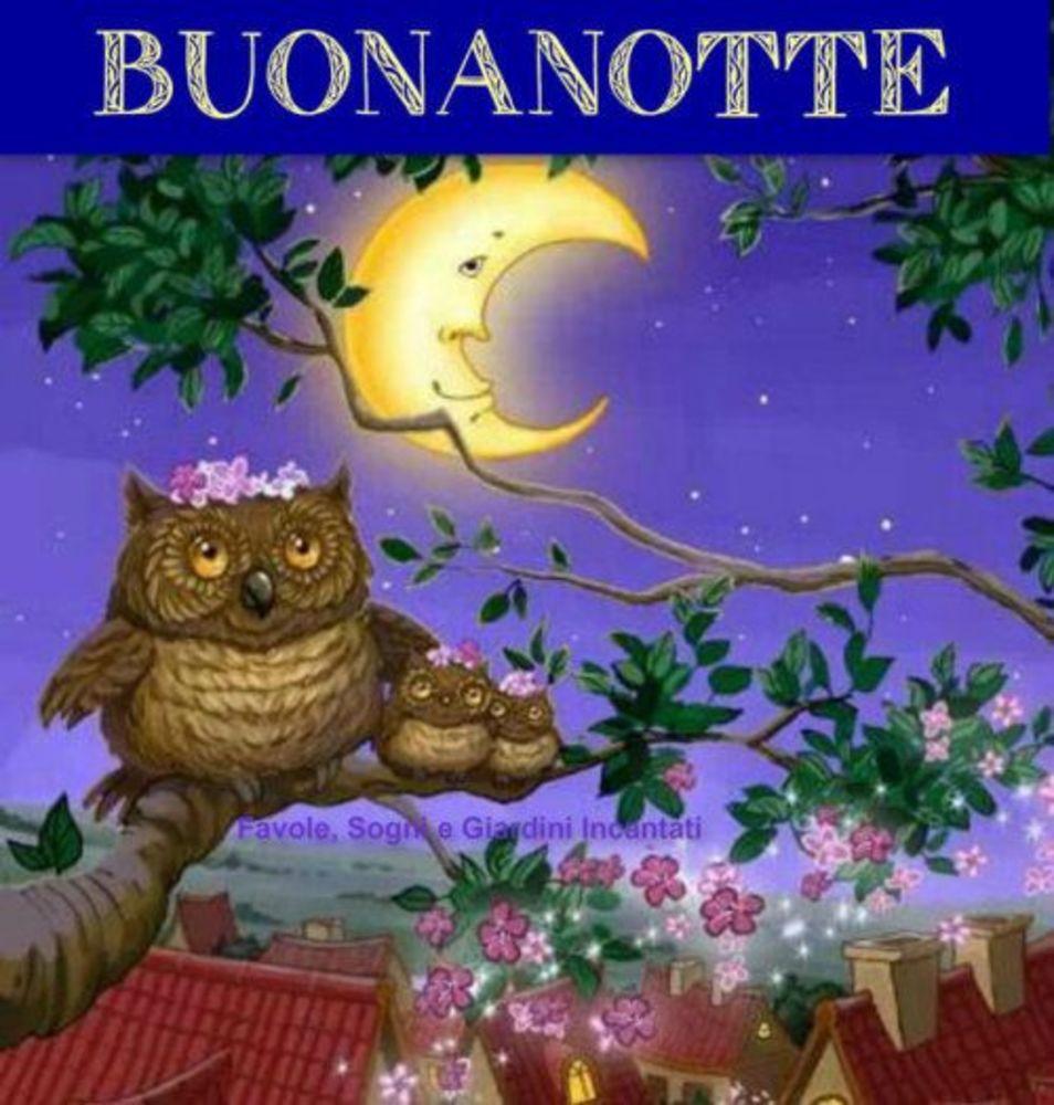 Bacionotte-014