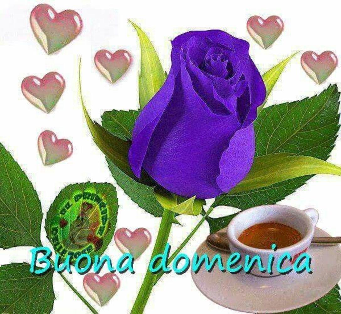 Buona-Domenica-016