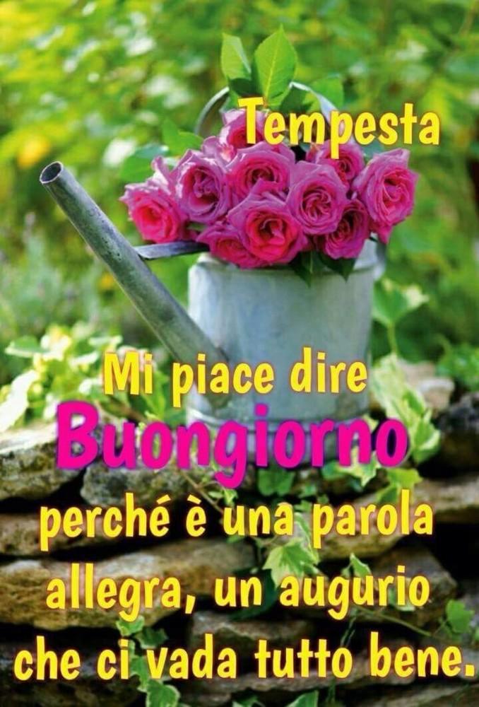 Cuore D Amore E D Amicizia Pagina 228 Di 274